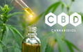 featured image thumbnail for post CBD Dosage in Perspective